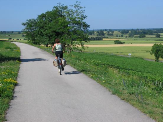 La voie verte nature