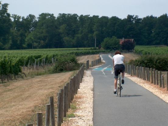 Vignobles vers Sauveterre
