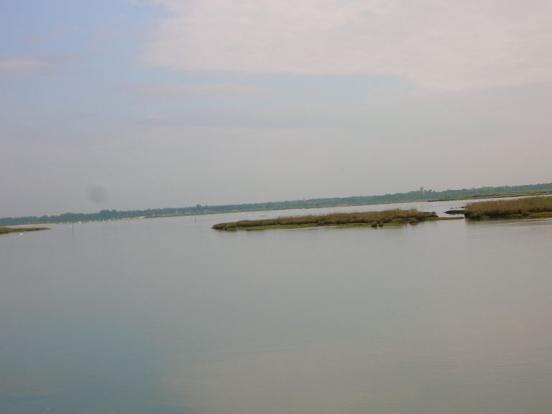 Delta de la Leyre