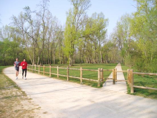 Parc de la Feyssine