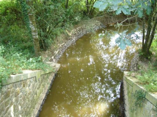 La rivière Oyon