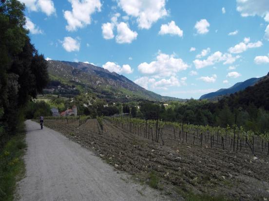 Piste, vigne et montagne