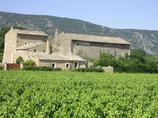 Ferme viticole à Maubec
