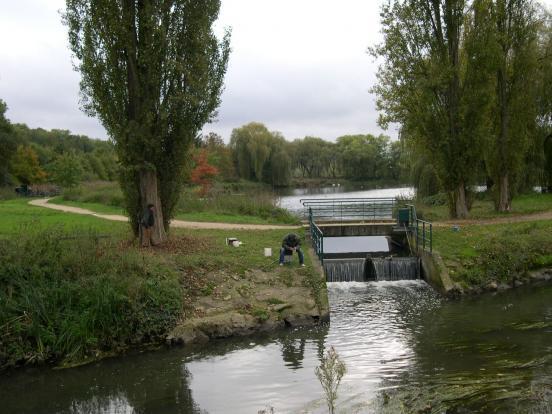 Bassin du Breuil