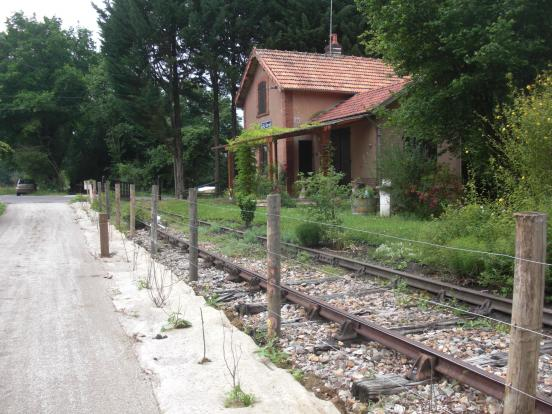 rails double champignons