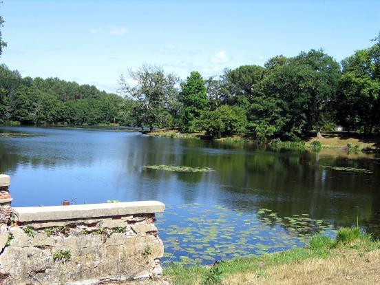 Lac des Forges à Pontenx