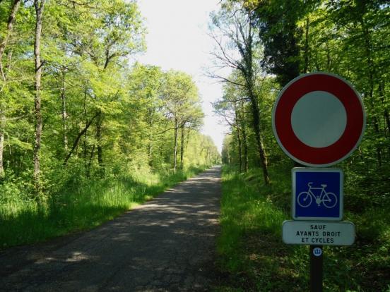 Véloroute du Rhin