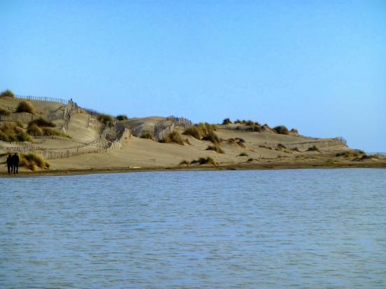 Pointe de l'Espiguette