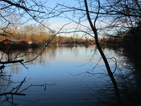 Au bord des étangs
