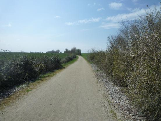 La voie et les champs