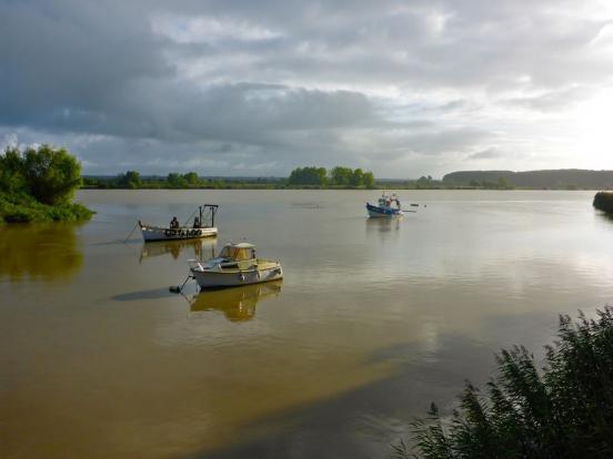 Loire en aval de Nantes