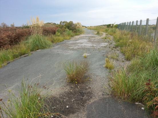 Fausse piste, à Tarnos