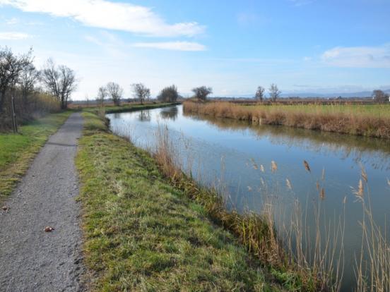 entre canal et étangs