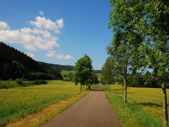 La voie verte à Liepvre