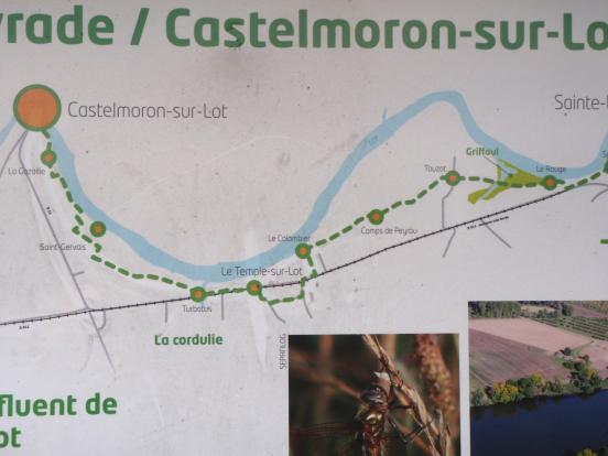 Projet Castelmoron