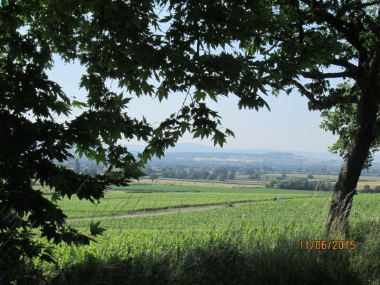Paysage de Saône et Loire