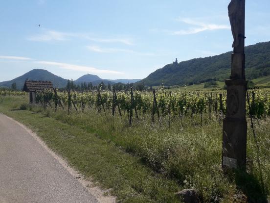 Vignes et châteaux