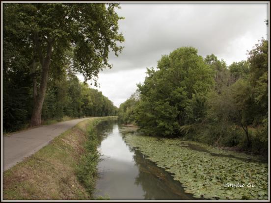 Chemin de halage (1)