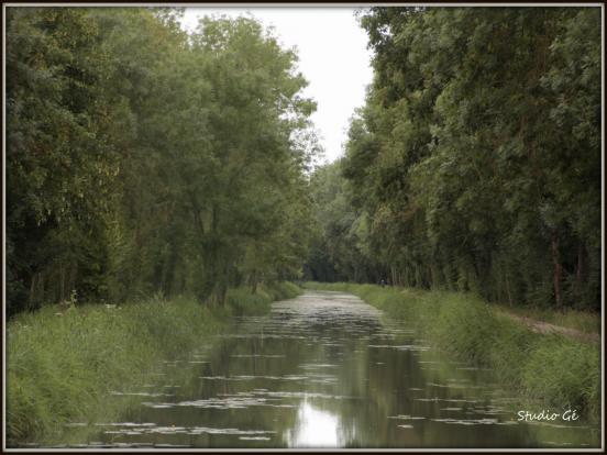 Chemin de halage (2)
