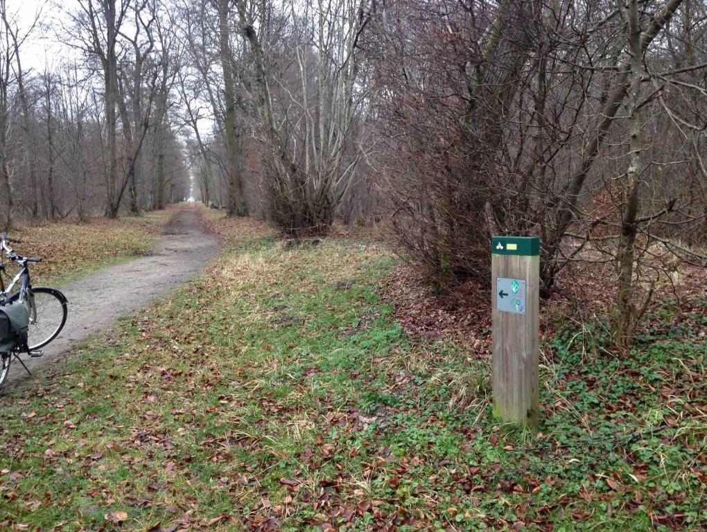 Balisage en forêt de Chantilly