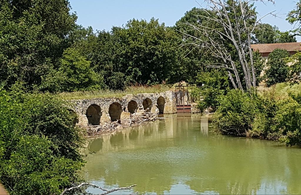 Pont-digue