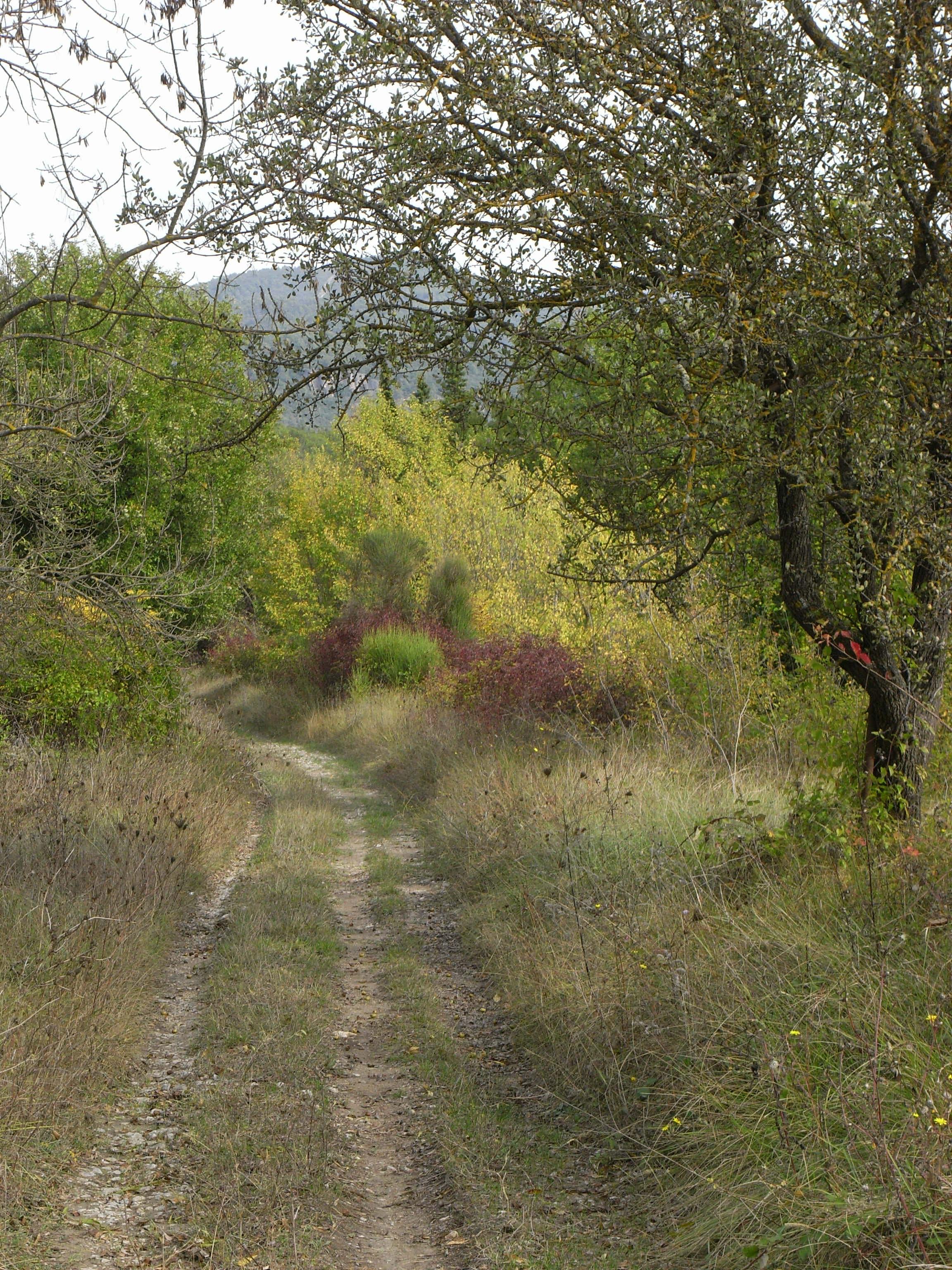 Ancienne voie ferrée
