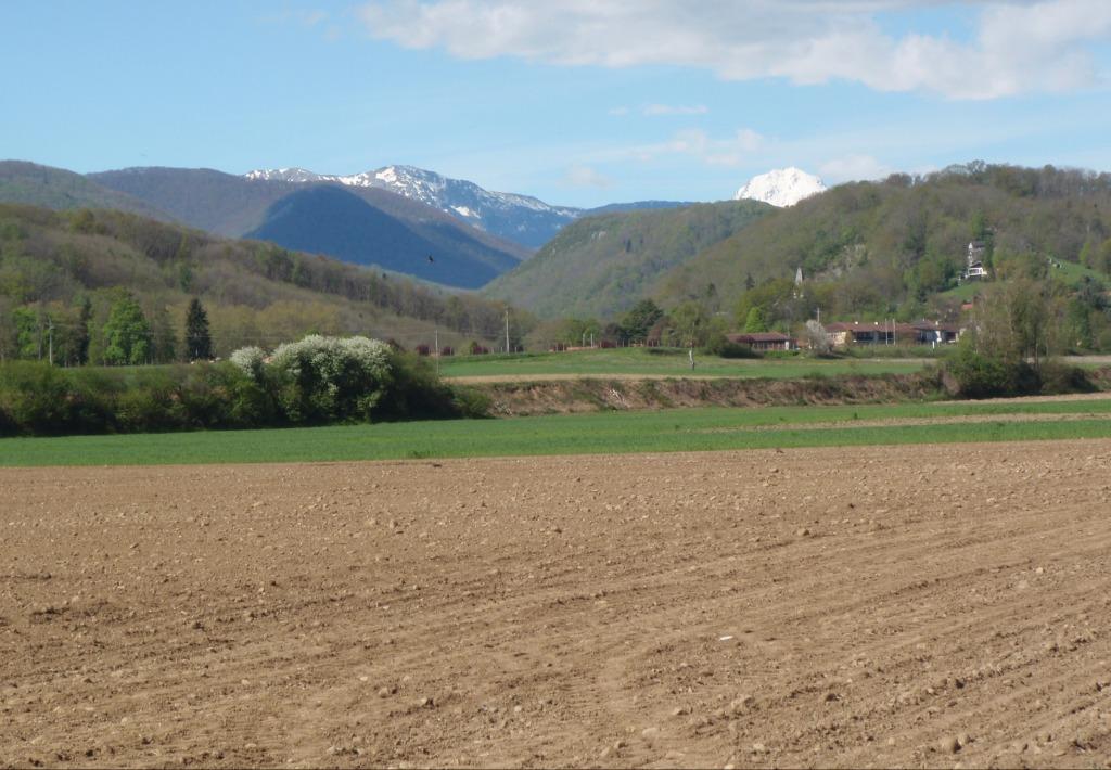 Tuzaguet-Pyrénées