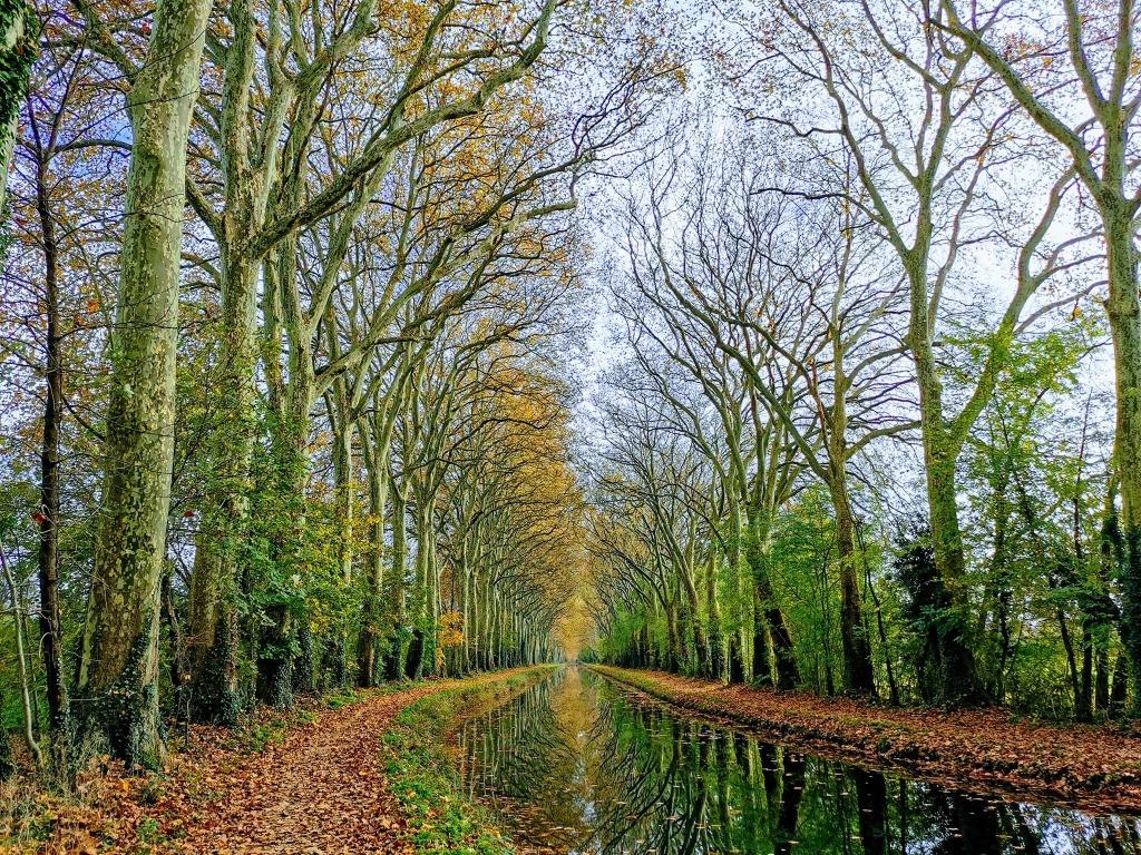 Reflets d'automne entre l'écluse de Givry et Mehun-Sur-Yèvre