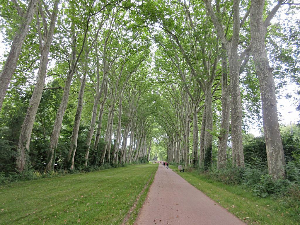 Trouée verte à Bourges