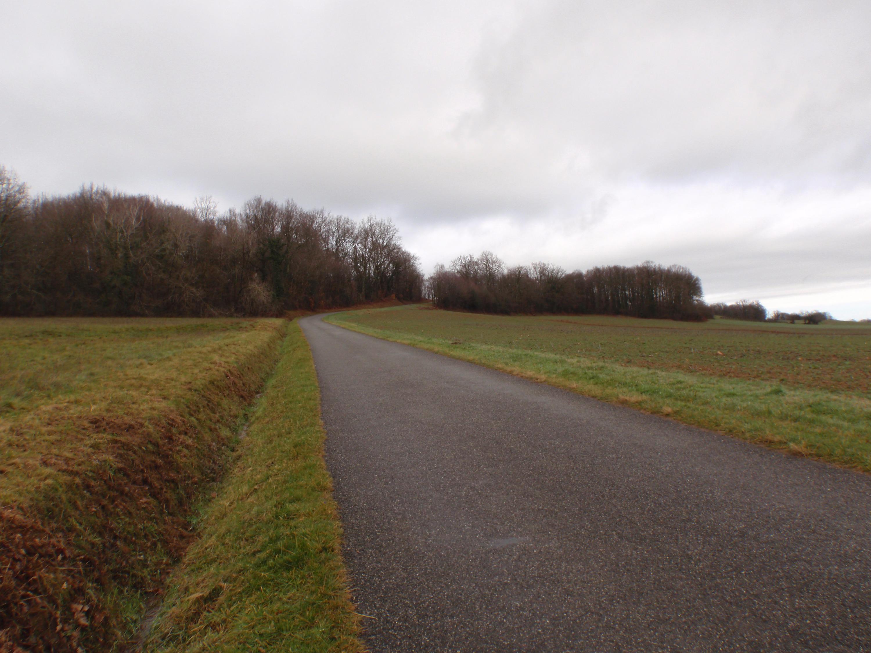 Galan vers Bonnefont-montée